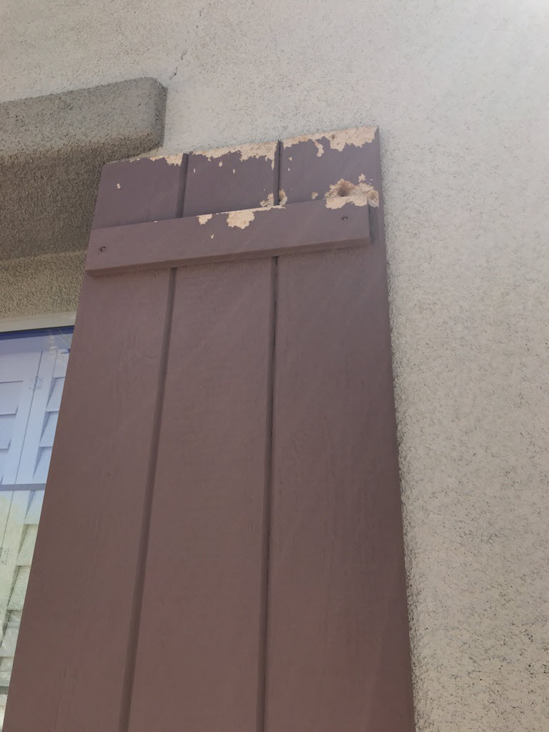 Some Bondo work, sanding, and fresh coats of paint brought this shutter back to life. The Cave Creek homeowners could not be happier with the outcome!